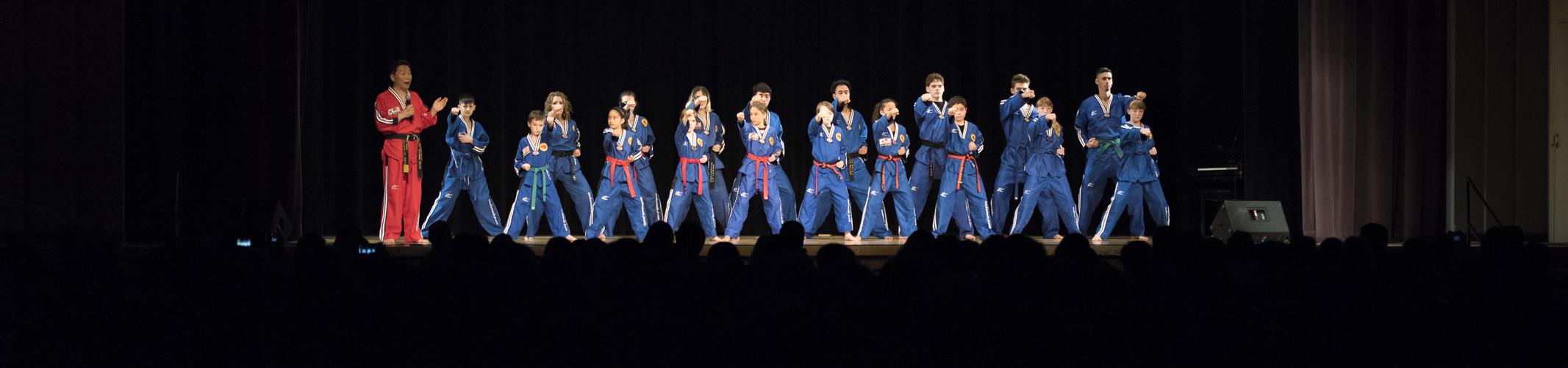 taekwondo, demo team, performance, eugene, oregon